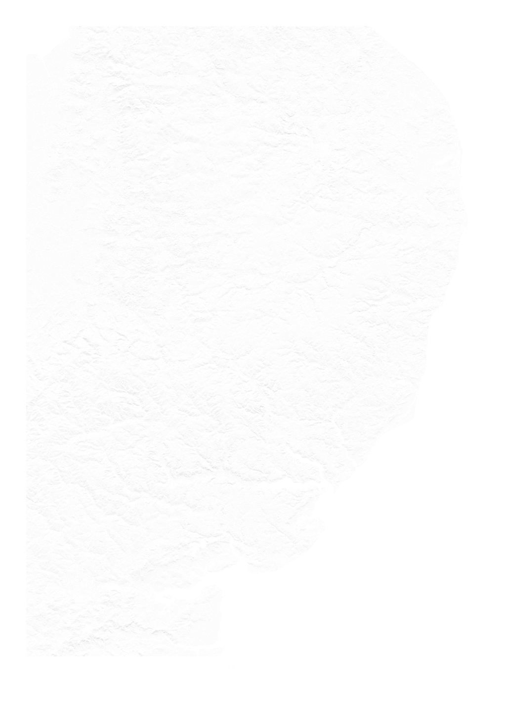Suffolk wall map