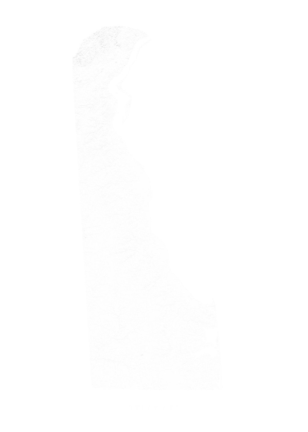 Delaware wall map