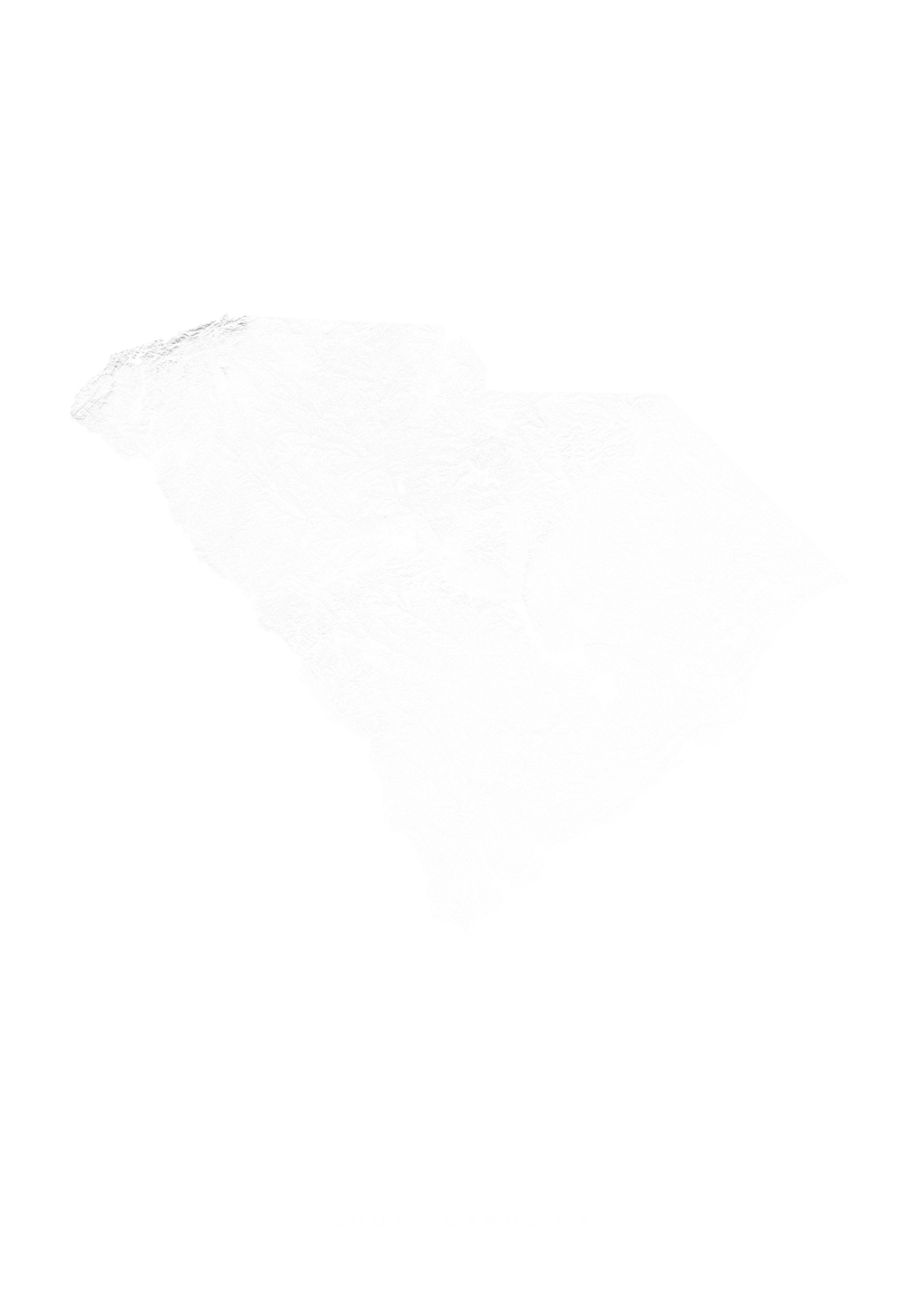 South Carolina wall map